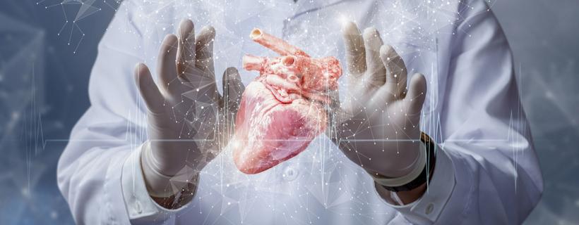 לב סביב ידיים
